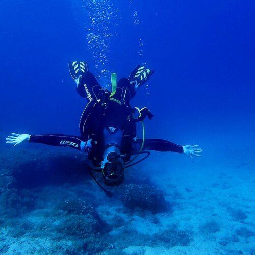 upside Down diver